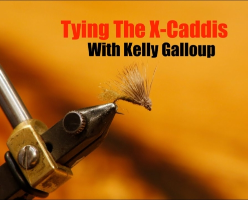 Tying-The-X-Caddis-With-Kelly-Galloup
