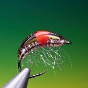 Tying-a-Hot-spot-Gammarus-with-Barry-Ord-Clarke