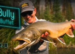 Bully-Buffet-GIANT-Bull-Trout-Fly-Fishing