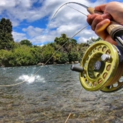 Fly-Fishing-world-famous-River-for-Large-Brown-Trout