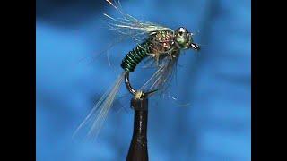 Fly-Tying-a-Beadeye-GSS-Brassie-with-Jim-Misiura