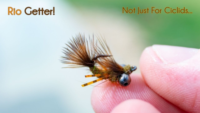 Rio-Getter-You-Name-it-It-will-Catch-it-McFly-Angler-Nymph-Fly-Tying-Video