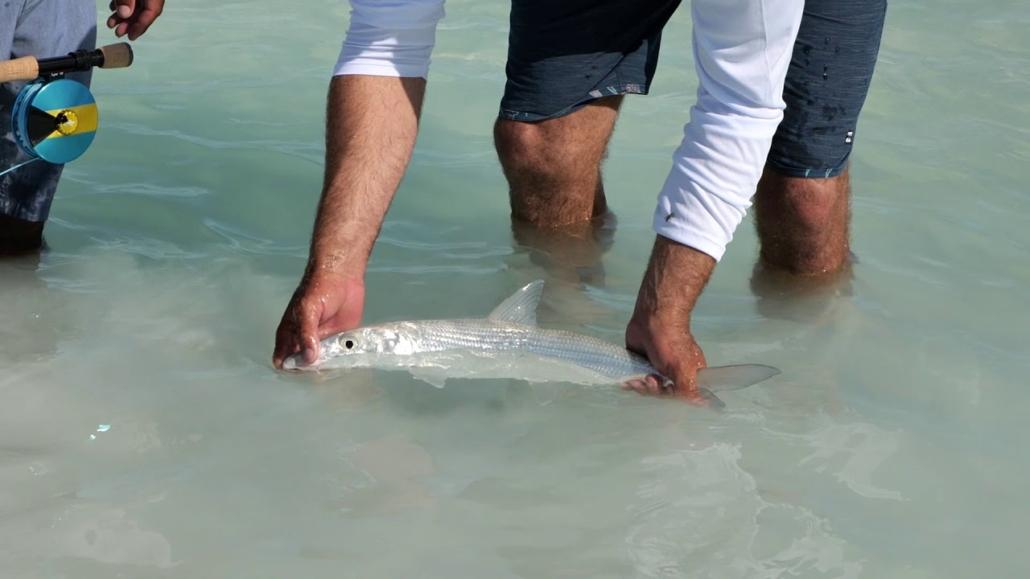 Silver-Kings-Season-6-E1-Bahamas-Bonefish-Part-1
