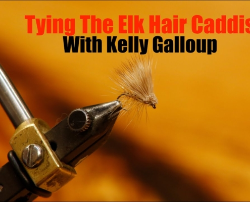 Tying-The-Elk-Hair-Caddis-with-Kelly-Galloup