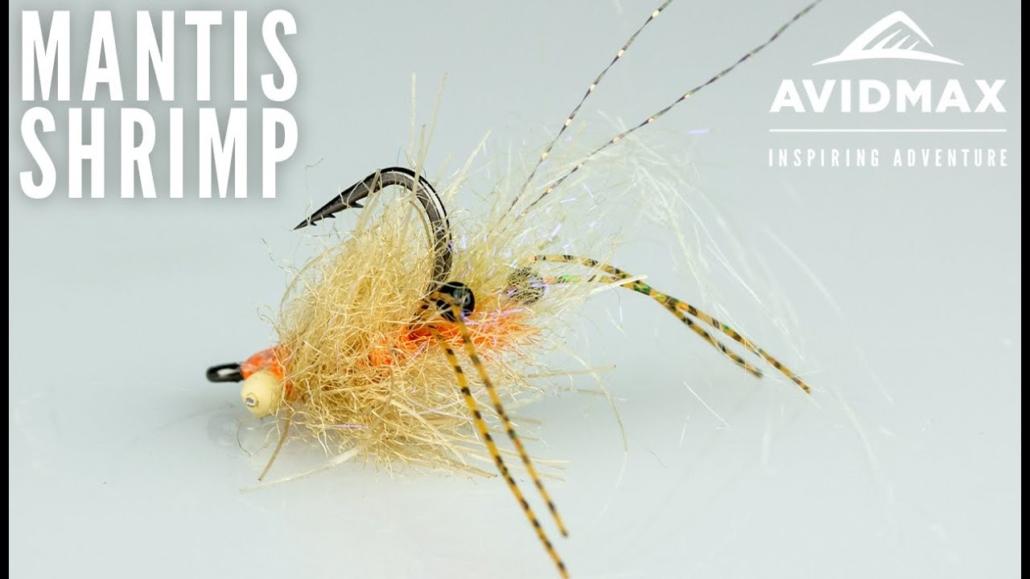 Ep-Spawning-Mantis-Shrimp-Saltwater-fly-tying