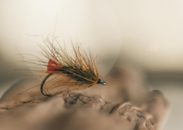 FLY-TYING-Red-Tag-Palmer-TUTORIAL