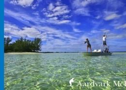 Fly-Fishing-Delphi-Club-In-The-Bahamas