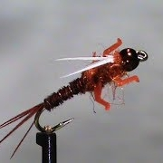 Fly-Tying-a-LivelyLegz-Rusty-Pheasant-Tail-Prince-with-Jim-Misiura