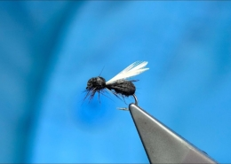 Tying-a-Foam-Black-Ant-Dry-Fly-with-Davie-McPhail