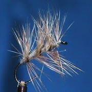 Beginner-Fly-Tying-an-Adams-Gnat-with-Jim-Misiura