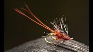 Fluebinding-Bladslusaborten-som-set-i-sportsfiskeren