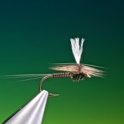 Fly-Tying-a-Sepia-Para-Dun-with-Barry-Ord-Clarke