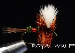 Royal-Wulff-Fly-Tying-Video-Tied-by-Charlie-Craven