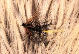 Tying-a-Kate-McLaren-with-Martyn-White