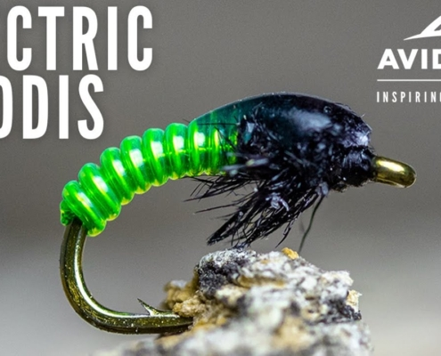 Electric-Caddis-Fly-Tying