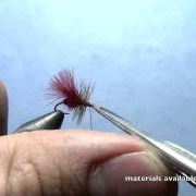 Fly-Tying-with-Ryan-Ryan39s-Fire-Ant