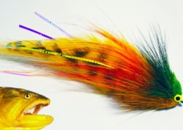 Golden-Dorado-fly-tying-instructions-by-Ruben-Martin
