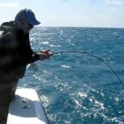Hardy-SINTRIX-9396quot-7-4-piece-rod-vs-55lb-Shark