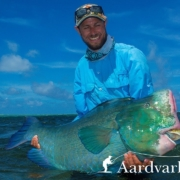 How-to-catch-bumphead-parrotfish-on-the-fly-Part-1
