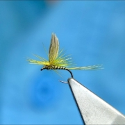 Tying-an-Up-Winged-Parachute-Fly-with-Davie-McPhail