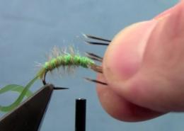 Tying-with-Hans-Hydropsyche-Caddis-Larvae