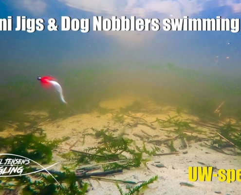 A-Dozen-Mini-jigs-and-Dog-Nobblers-under-water-special