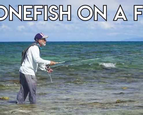 Basics-of-Bonefish-On-A-Fly