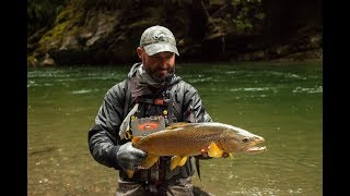 Fly-Fishing-NZ-Opening-day-Scott-G-Series-rod-test