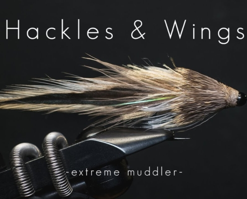 Fly-Tying-Extreme-Muddler-Hackles-Wings