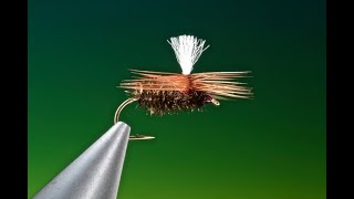 Fly-Tying-a-Brown-Peacock-beetle-with-Barry-Ord-Clarke