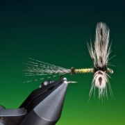 Fly-Tying-a-spent-green-drake-with-Barry-Ord-Clarke