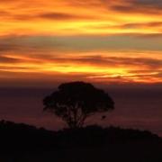 On-the-hunt-South-Island-NZ