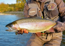 SOLVING-THE-PUZZLE-Dry-fly-Fishing-New-Zealand
