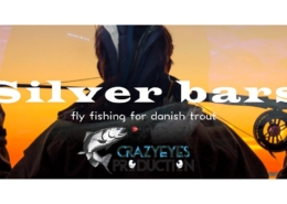 Silver-bars-fishing-for-danish-trout