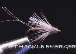 Soft-Hackle-Emerger-Tied-By-Charlie-Craven