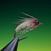 Tying-an-Antron-caddis-pupa-with-Barry-Ord-Clarke