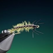 Tying-the-Melt-glue-Rhycophila-larva-with-Barry-Ord-Clarke