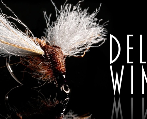 Delta-Wing-Tying-and-fishing-a-dry-fly-that-imitates-both-an-emerger-and-a-spinner