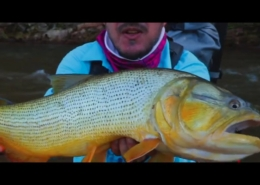 Fishing-Dorados-in-the-Jungle