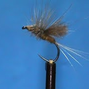 Fly-Tying-a-Duck-Dun-with-Jim-Misiura