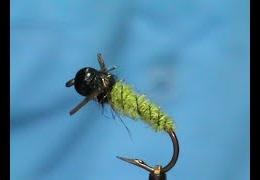 Fly-Tying-a-LivelyLegz-Caddis-Larva-with-Jim-Misiura