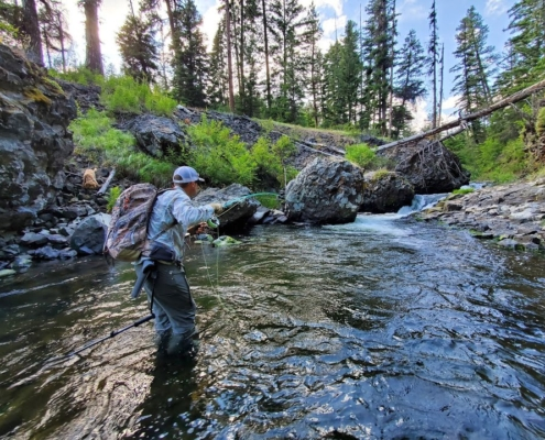 Mini-Mountain-Trout-2-Weight-Echo-River-Glass-Rod-Review