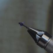 The-purple-Darth-Baetis_b197e1a0