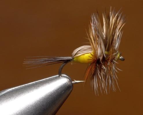 16-Yellow-Humpy