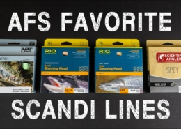 AFS-Favorite-Scandi-Lines