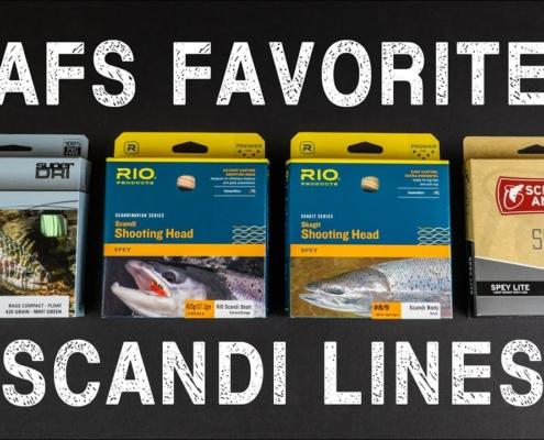 AFS-Favorite-Scandi-Lines