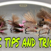 CDC-Tips-and-Tricks-discussion-and-tips-about-CDC-how-to-use-it-100