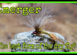 Emerger-best-form-of-dry-fly