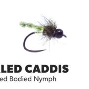 Fly-Tying-Tutorial-Furled-Caddis