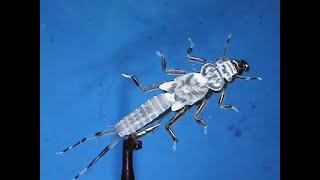 Fly-Tying-a-Hemingway-Evolution-Stonefly-with-Jim-Misiura
